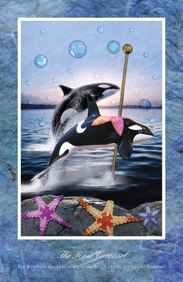 Rose Carousel Orca poster